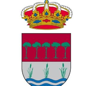 El escudo y la bandera de Laguna deDuero