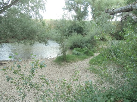 Playa en el río Duero