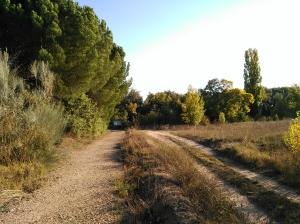 Paraje donde se sitúan el desagüe de la Acequia y la Fuente de Pedro Gómez