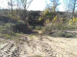 Zona del rio, donde se ubica la bomba de agua