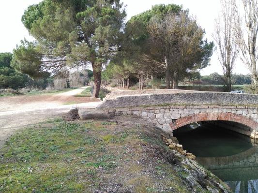 Puente del camino de La Cistérniga a Herrera