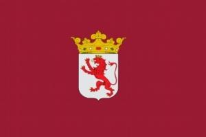 bandera_leon