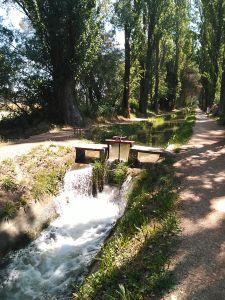 Acequia de Laguna de Duero, frente a Huertos Ecológicos el Maniego