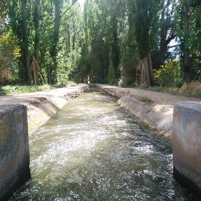 La acequia de Laguna de Duero: naturaleza y ociounidos