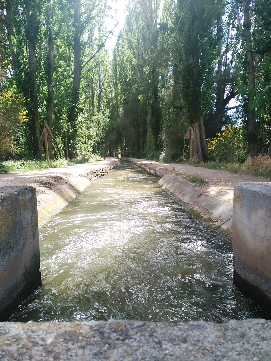 La acequia de Laguna de Duero: naturaleza y ocio unidos